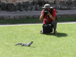TOURIST IN UXMAL