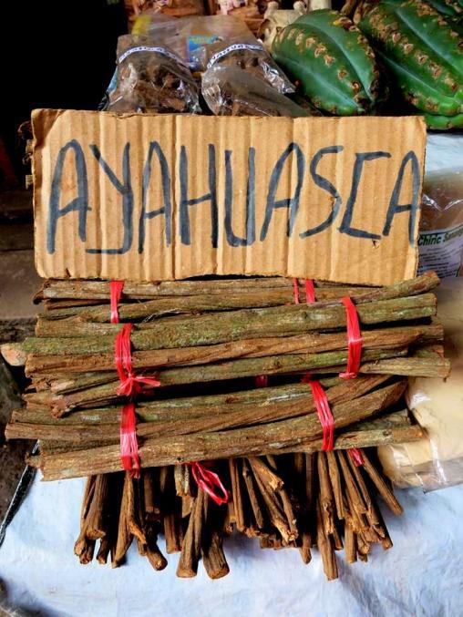 Ayahuasca - Heilpflanze aus dem Urwald