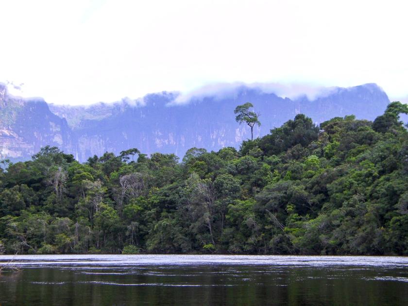 Gran Sabana - Salto Angel